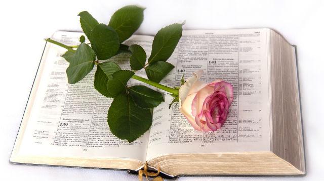 प्रभु की वापसी का स्वागत करने के लिए हमें किस प्रकार