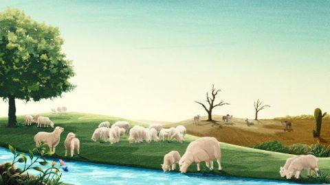 सच्चे और झूठे मार्गों में, तथा सच्ची और झूठी कलीसियाओं में विभेदन